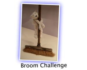 Broomchallenge_fit_300